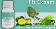 fit expert review